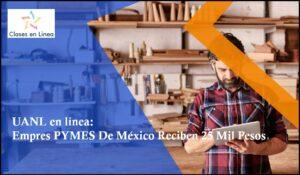 Empresas PYMES De México Reciben 25 Mil Pesos